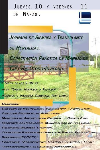 REALIZARAN JORNADAS DE SIEMBRA Y TRASPLANTE DE HORTALIZAS
