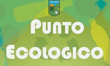 RECOLECCIÓN ORGANIZADA DE RESIDUOS EN LA PLAZA MARCAIDA