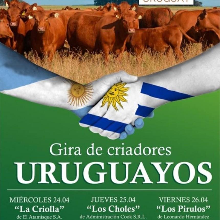 GANADEROS URUGUAYOS VISITAN CABAÑA LIMANGUS EN TRES LOMAS
