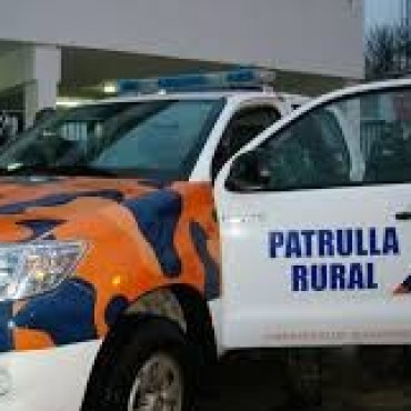 EL COMANDO DE PREVENCION RURAL INTERDICTO ANIMALES VACUNOS Y EQUINOS Y SECUESTRO UN AUTOMOVIL.
