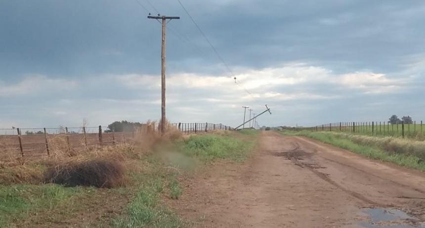 CUADRILLAS TRABAJAN PARA RESTABLECER SERVICIO ELÉCTRICO EN ZONAS RURALES