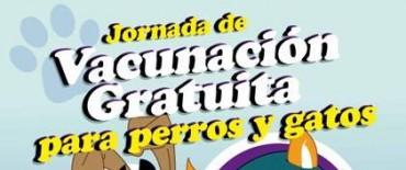 CRONOGRAMA DE VACUNACIÓN GRATUITA ANTIRRÁBICA DE FELINOS Y CANINOS